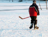 Hockey on a lake — Stock Photo