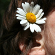 Stock Photo: Flower and the girl ear