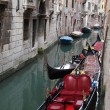 Royalty-Free Stock Photo: Venice - gondola