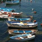Riomaggiore - Cinque Terre — Stock Photo #2033630