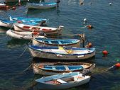 Riomaggiore - cinqueterre — Stockfoto