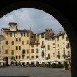 The Piazza Anfiteatro - Lucca — Stock Photo