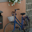 Lonely blue Bicycle in Lucca — Stock Photo
