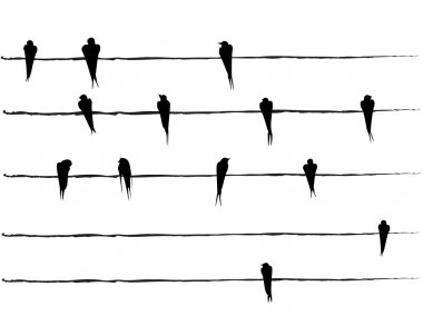 Silhouettes of Birds on wires