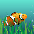 Coral reef clown fish — Vector de stock