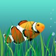 Royalty-Free Stock Векторное изображение: Coral reef clown fish