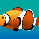 mercan palyaço balığı — Stok Vektör