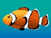 Coral reef clown fish — Stock Vector