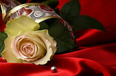 White rose and red satin for Valentine — Stock Photo