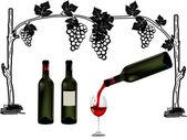 Wine bottles vector illustrated — Stock Vector