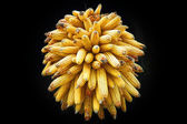 Golden-yellow round corn cluster — Stock Photo