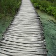 wooden boardwalk over brook — Stock Photo
