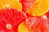 Close-up of grapefruit and orange slices — Stock Photo