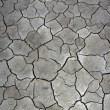 Cracked mud backgorund — Stock Photo