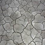Cracked mud backgorund — Stock Photo