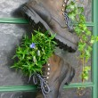 Old mountain boots — Stock Photo