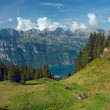 View to the lake Walensee — Stock Photo