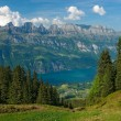 View to the lake Walensee — Stock Photo #1803995
