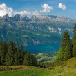 Stock Photo: View to the lake Walensee
