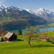 Stock Photo: Alpine landscape in spring