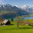 Foto Stock: Alpine landscape in spring
