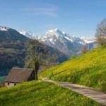 paisaje alpino en primavera — Foto de Stock