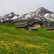 Alpine houses, Switzerland — Stok fotoğraf