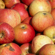Red organically grown apples — Stock Photo