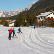 Crosscountry skiers on a track in Davos — Stock Photo