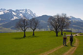 Nordic walking in Swiss Alps — Stock Photo