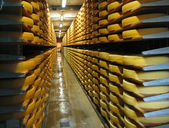 Rows of cheese loafs — Stock Photo