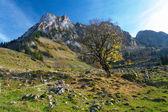Autumn in Jura mountains, Switzerland — Stock Photo