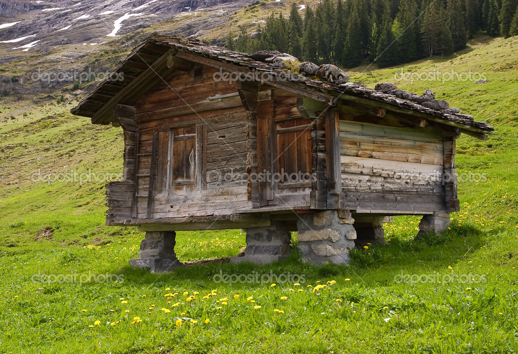 Wooden mountain hut with a stone roof on stone piles near Grindelwald, Switzerland — Stock Photo #1804302