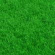 Royalty-Free Stock Photo: Fresh spring green grass background