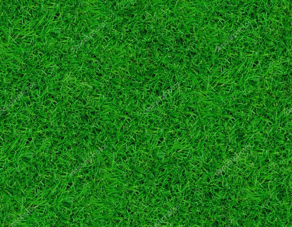Close-up image of fresh spring green grass  Stock Photo #2009300