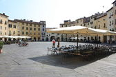 Lucca - Anfiteatro square — Stock Photo