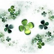 Stock Photo: Four leafed clovers, shamrock