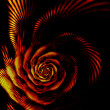 Fiery rose, the flower of passion — Stock Photo