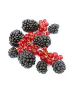 Blackberries and red currant — Stock Photo