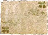 Old parchment paper with shamrock — Stock Photo