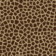 Giraffe spots, giraffe fur - Stock Photo