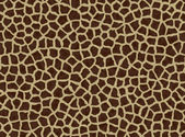 Giraffe spots, giraffe fur — Stock Photo