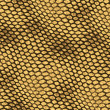 Stock Photo: Reptile skin texture background