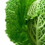 Kale — Stock Photo