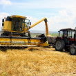 Stock Photo: Tractor and combine