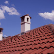 Stock Photo: Roof with chimneys