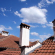 Roof with chimneys — Stock Photo #1917514