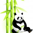 Bamboo and panda — Stock Vector
