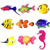 Tropical fish — Stock Vector