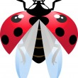 Flying ladybird — Stock Vector